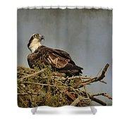 The Osprey Nest Shower Curtain