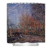 The Outskirts Of The Fontainebleau Forest Shower Curtain
