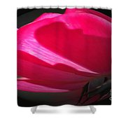 The Oval Rose Shower Curtain