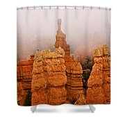 The Over Acheiver Shower Curtain