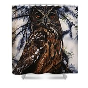 The Owl Shower Curtain