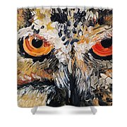 The Owl Of Lakshmi Textured Painting_0476 Shower Curtain