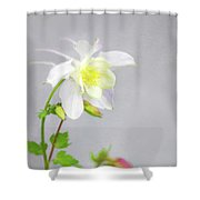 The Painted Columbine Shower Curtain