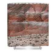 The Painted Desert  8020 Shower Curtain