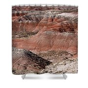 The Painted Desert  8024 Shower Curtain