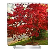 The Painted Leaves Shower Curtain