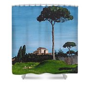 The Palatine Hill, Rome Shower Curtain