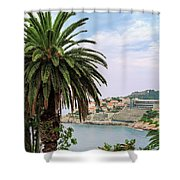 The Palm Is Always Associated With Summer, Sea, Travelling To Warm Countries And Rest Shower Curtain