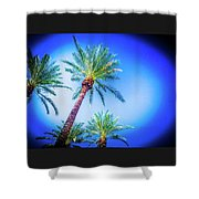 The Palms Of Scottsdale  Shower Curtain