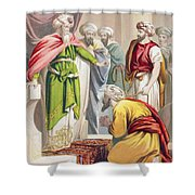 The Parable Of The King And The Shower Curtain