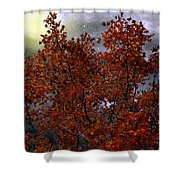 The Passion Of Autumn Shower Curtain