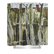 The Past Space Shower Curtain