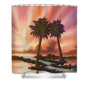 The Path Ahead Shower Curtain