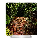 The Path Shower Curtain
