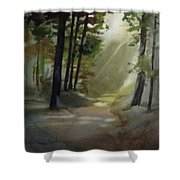 The Path Love Took Shower Curtain
