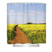 The Path To Bosworth Field Shower Curtain by John Edwards