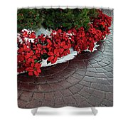 The Path To Christmas - Poinsettias, Trees, Snow, And Walkway Shower Curtain