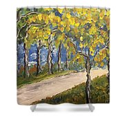 The Path To Piccadilly Shower Curtain