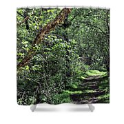 The Path We Walked Shower Curtain