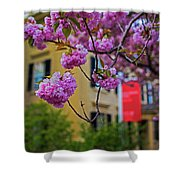 The Peabody Essex Museum At Spring Salem Ma Shower Curtain