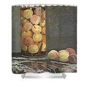 The Peach Glass Shower Curtain