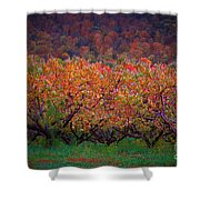 The Peach Orchard Shower Curtain