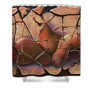 The Pears Fresco With A Crackle Finish Shower Curtain