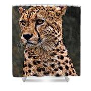 The Pensive Cheetah Shower Curtain