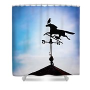 The Perch Shower Curtain