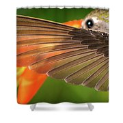 The Perfect Left Wing Of A Hummingbird Shower Curtain