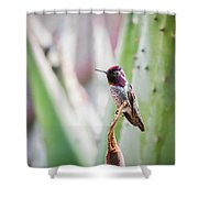 The Perfect Perch  Shower Curtain