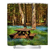 The Perfect Picnic Spot Shower Curtain