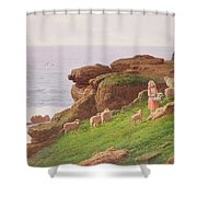 The Pet Lamb Shower Curtain by J Hardwicke Lewis