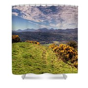 The Picnic Spot Of Dreams Shower Curtain