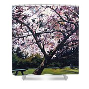 The Picnic Table Shower Curtain