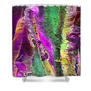 The Pied Piper Of Hamelin Shower Curtain