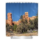 The Pillars Shower Curtain