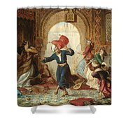 The Pillow Fight Shower Curtain