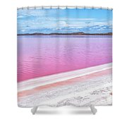 The Pink Diagonal Shower Curtain