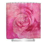 The Pink Lady 5 Shower Curtain