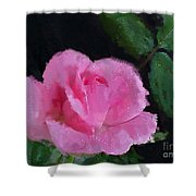 The Pink Rose Shower Curtain