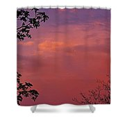 The Pink Sky Shower Curtain