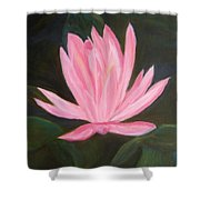 The Pink Water Lily Shower Curtain