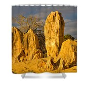 The Pinnacles Nambung National Park Australia Shower Curtain