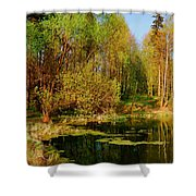 The Pond In The Spring Shower Curtain