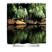 The Pond On Lamplight Lane Shower Curtain
