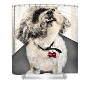 The Pooch With The Crooked Tooth Shower Curtain
