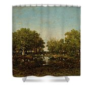 The Pool, Memory Of The Forest Of Chambord Shower Curtain