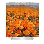 The Poppy Fields - Antelope Valley Shower Curtain