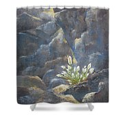 The Power Of Light Shower Curtain
